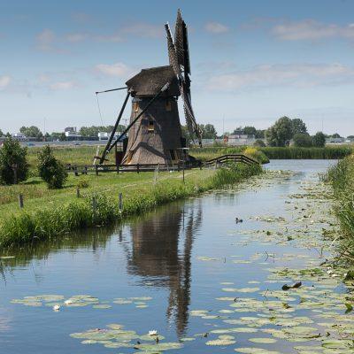 De Rijnlandse molenstichting - Doeshofmolen